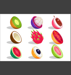 tropical fruits sliced in half set bright icons vector image