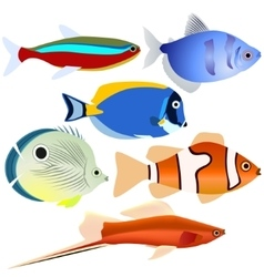 Aquarium fish-1 vector