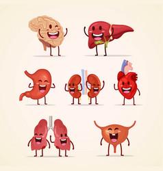 Cute character cartoon human internal organs vector