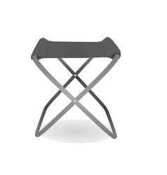 grey fishing chair vector image
