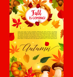 autumn leaf and harvest vegetable banner template vector image vector image