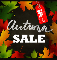 frame of autumn leaves painted on black chalkboard vector image