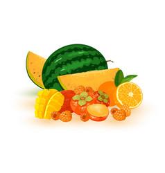 Cartoon summer fruits set vector