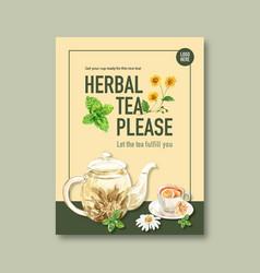 Herbal tea poster design with chrysanthemum vector