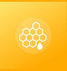honey icon with honeycomb vector image