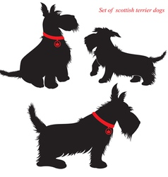 Scottish terrier dog silhouettes vector