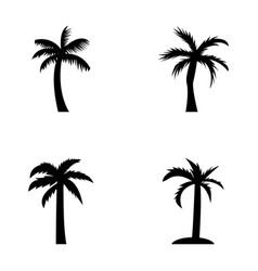 The palm icons vector