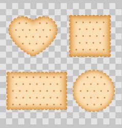 Cartoon biscuit eating pastry breakfast cookies vector