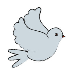 white bird of peace vector image