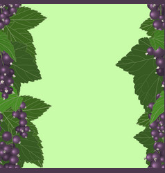 black currant vertical seamless pattern vector image