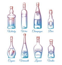 Colorful alcohol bottles collection vector