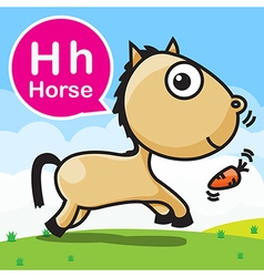 H Horse color cartoon and alphabet for children to vector