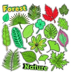 Nature Plants and Leaves Scrapbook Stickers vector image