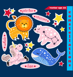 set constellations vector image