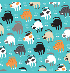 cats in vector image