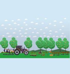 gardening concept in flat vector image