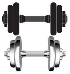 dumbbell chrome and black icon vector image