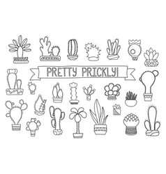 thin line cactus and succulent clipart vector image vector image