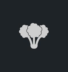 broccoli icon simple vegetable vector image