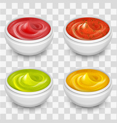Different gourmet sauces mustard ketchup soy vector