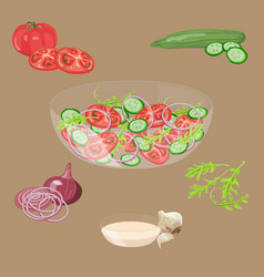 fresh vegetables salad vector image