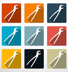 Pliers - Pincers Flat Design Icons Set vector image