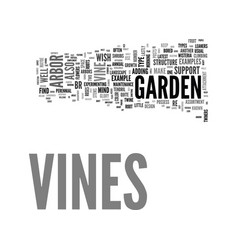 a guide to vines and how to vine beauty with your vector image vector image