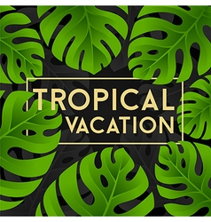 Tropical vacation card with monstera leaves vector image