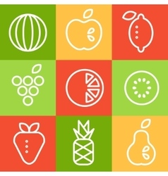 Fruits in Line Art Style Set vector image vector image