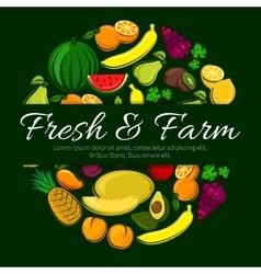 Fruit circle poster for organic farm food design vector image
