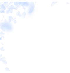 Light blue flower petals falling down magnetic ro vector