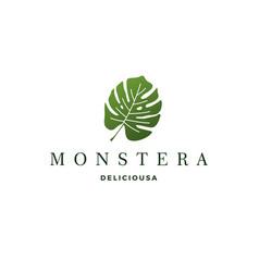 Monstera deliciosa deliciousa leaf logo icon vector