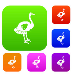 ostrich set color collection vector image vector image