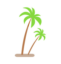 palm trees with green leaves and trunk growing vector image