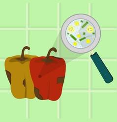 Rotten and spoiled bell pepper vector
