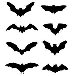bats 2 vector image