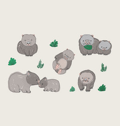 set of cute young wombat in various poses adult vector image vector image