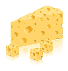 cheese 06 vector image