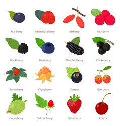 Berries icons set cartoon style vector
