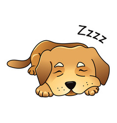 Cute dog sleeping vector