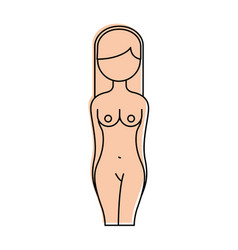 female torso anatomy silhouette vector image