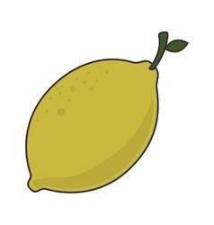 lemon fruit food vector image