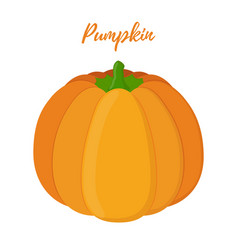 orange pumpkin halloween symbol vector image