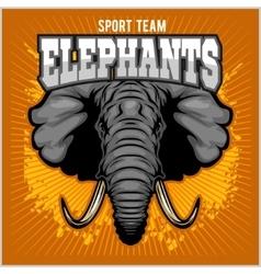 Elephants - sport club team symbol Safari hunt vector image