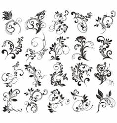 floral elements for design vector image