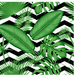 Beautiful seamless floral pattern tropical jungle vector