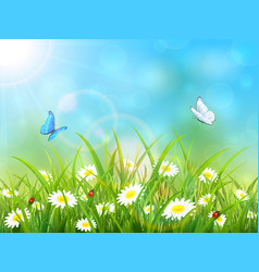 Blue nature background with sun and butterflies vector