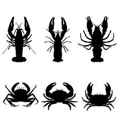 Crawfish and crab vector