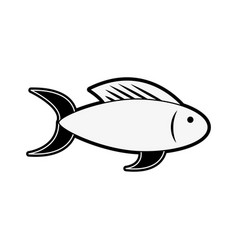 fish food isolated vector image