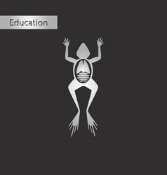 Frog biology black and white style icon vector